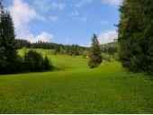 Grundstück, 5442, Schattau