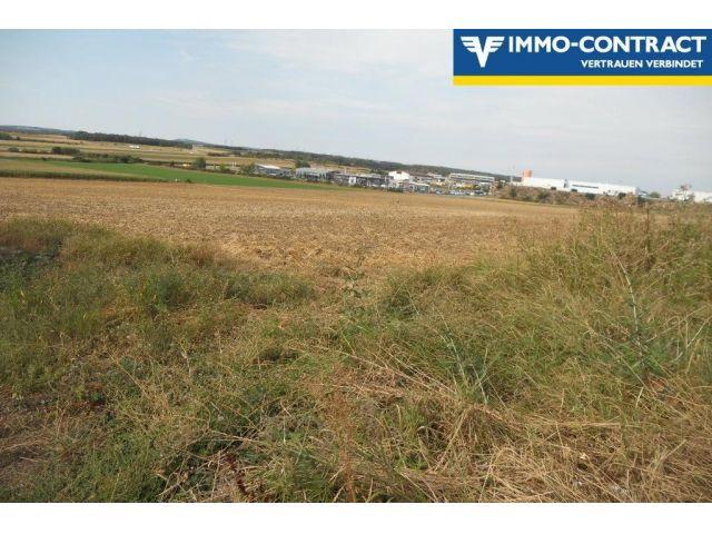Grundstück, 3580, Horn