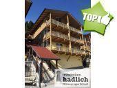 Eigentum, 5752, Viehhofen