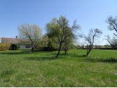 Grundstück, 8280, Loipersdorf bei Fürstenfeld