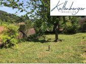 Grundstück, 2754, Waldegg