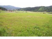 Grundstück, 8121, Deutschfeistritz