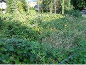 Grundstück, 4810, Gmunden