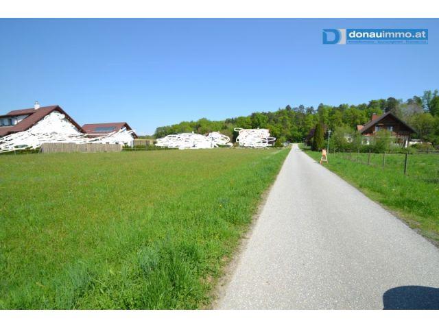 Grundstück, 8282, Dietersdorf bei Fürstenfeld