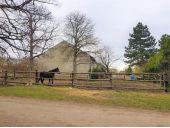 Grundstück, 2434, Götzendorf an der Leitha