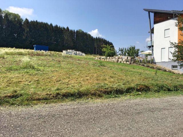 Grundstück, 4431, Haidershofen