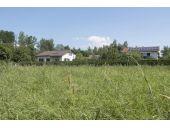 Grundstück, 8112, Gratwein