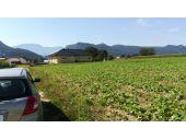 Grundstück, 9131, Grafenstein
