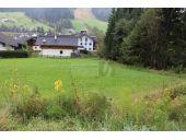 Grundstück, 5442, Rußbach am Paß Gschütt
