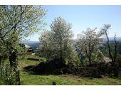 Grundstück, 8160, Weiz