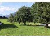 Grundstück, 6173, Oberperfuss