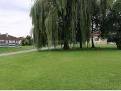 Grundstück, 6812, Meiningen