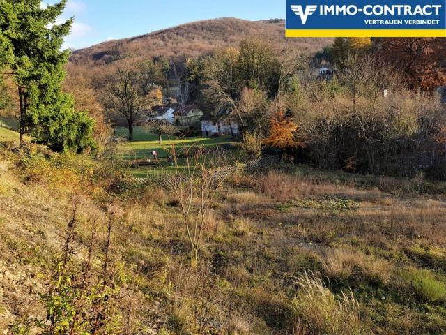 Grundstück, 2391, Kaltenleutgeben