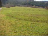 Grundstück, 6314, Niederau-Wildschönau