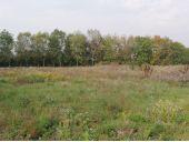 Grundstück, 2442, Unterwaltersdorf