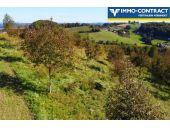 Grundstück, 8380, Henndorf im Burgenland